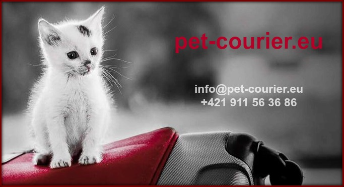 www.pet-courier.eu/en/about-us/